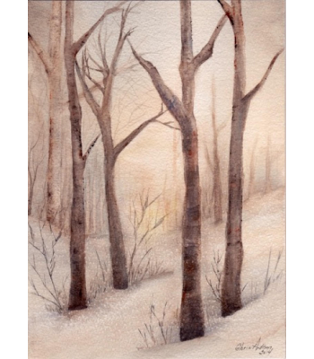 """A Winter Snapshot"" Fine Art Card"